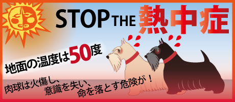 STOP THE 熱中症